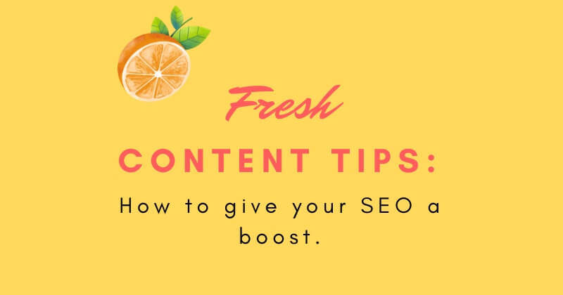 content freshness google